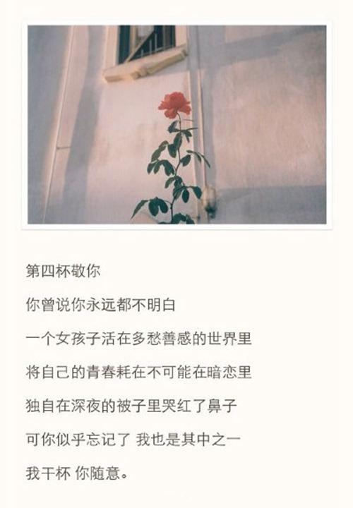 敬你九杯酒图片大全_WWW.66152.COM