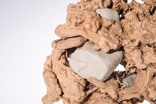 好看的根雕艺术品摆件图片_WWW.66152.COM