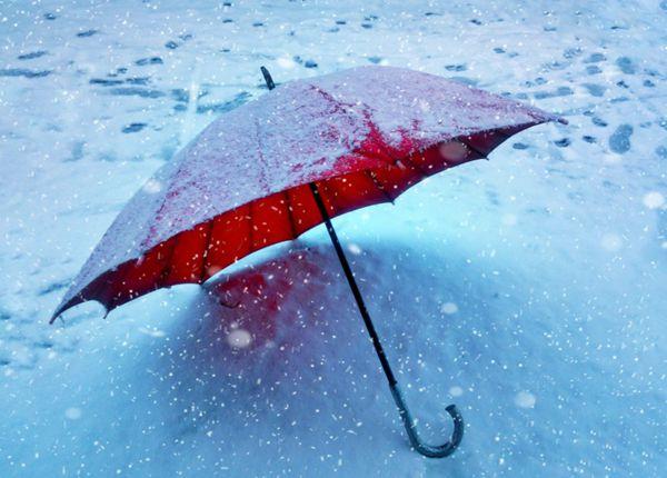 各式各样的雨伞图片_WWW.66152.COM