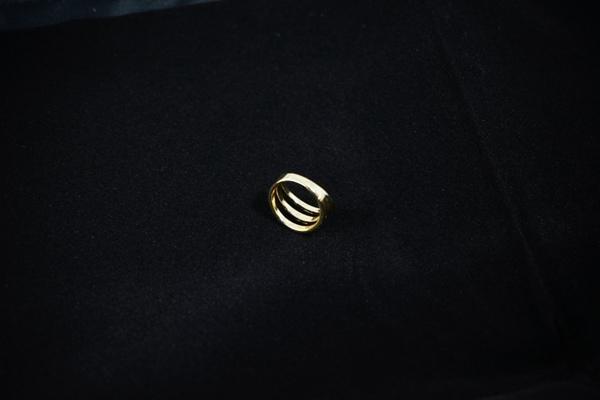 精美的戒指图片_WWW.66152.COM