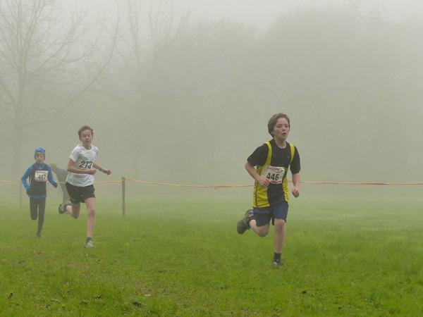 草地上的赛跑比赛图片_WWW.66152.COM