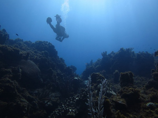潜水运动图片_WWW.66152.COM