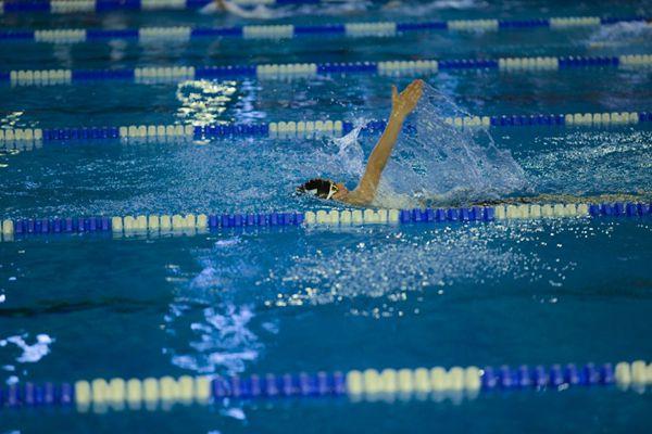 在游泳池里游泳的人图片_WWW.66152.COM