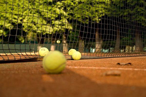 弹性极好的网球图片_WWW.66152.COM