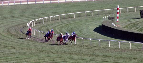 马场里正在进行的赛马比赛图片_WWW.66152.COM