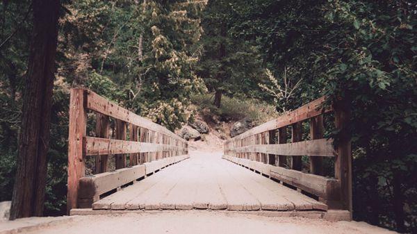 木质栈道风景图片_WWW.66152.COM