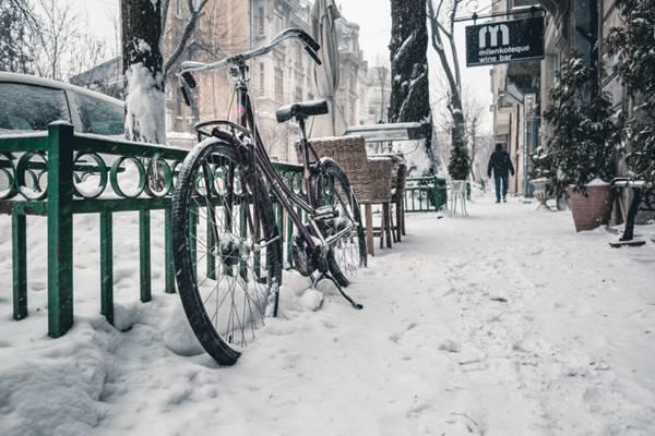 街上的自行车图片_WWW.66152.COM