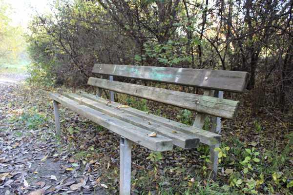 户外的长椅图片_WWW.66152.COM