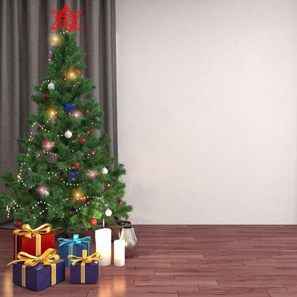 室内圣诞树图片_WWW.66152.COM