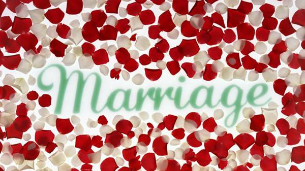 喜庆婚礼图片_WWW.66152.COM