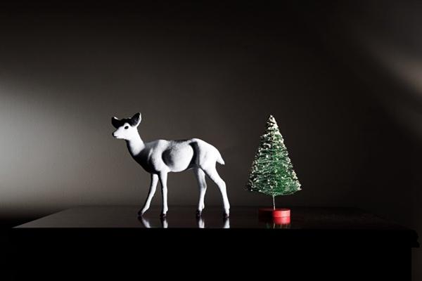 圣诞概念静物图片_WWW.66152.COM