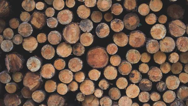 成堆的木材背景图片_WWW.66152.COM