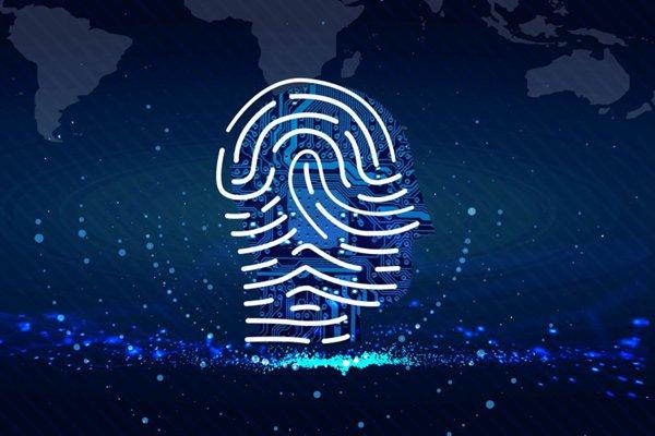 指纹信息图片_WWW.66152.COM