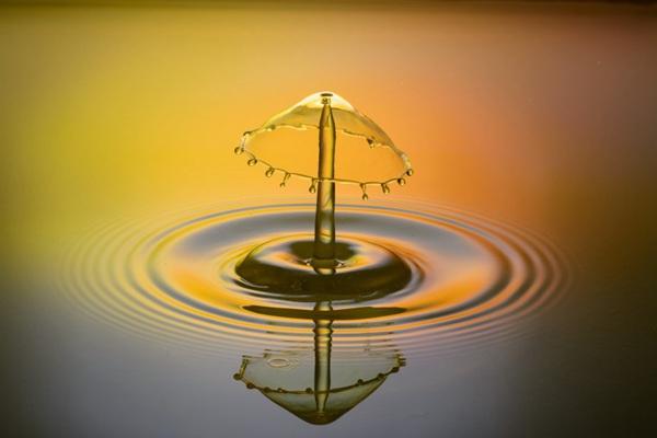 水滴特写素材图片_WWW.66152.COM