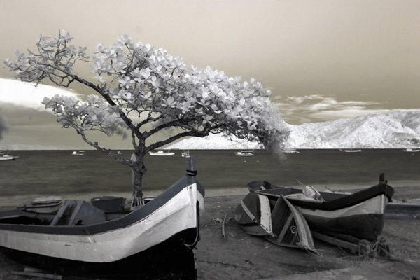 黑白风景摄影图片_WWW.66152.COM