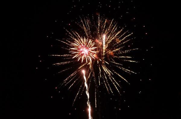 夜空中唯美璀璨的烟花图片_WWW.66152.COM