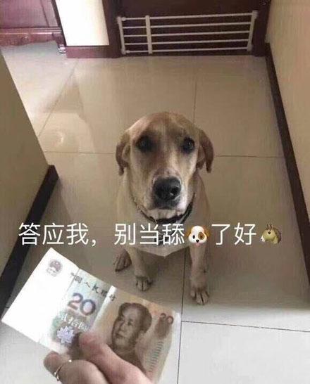 舔狗是什么意思_WWW.66152.COM