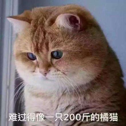 大橘为重是什么意思_安徽快3直播 www.e21uu.cn