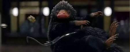 神奇动物在哪里嗅嗅原型是什么_WWW.66152.COM