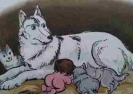 狼为什么会养人类婴儿_WWW.66152.COM