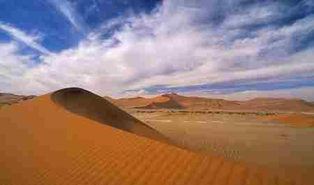 纳米比亚的纳米比沙漠有大象_WWW.66152.COM