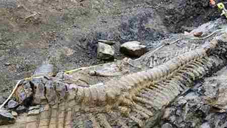 """青海湖海现12米巨型""""龙""""_WWW.66152.COM"""