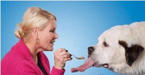 世界上舌头最长的狗_WWW.66152.COM