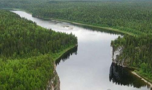世界六大森林是哪几个_WWW.66152.COM
