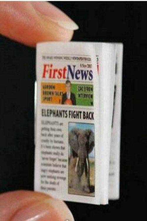 世界上最小的报纸_WWW.66152.COM