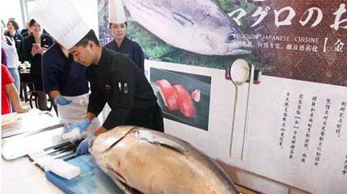世界上最大的金枪鱼_WWW.66152.COM