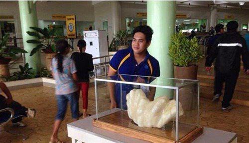 世界上最大的珍珠重达68斤_WWW.66152.COM