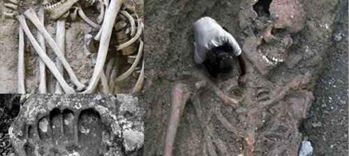 中国发现65米巨人骸骨_WWW.66152.COM