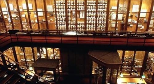 美国穆特博物馆肥皂女尸_WWW.66152.COM