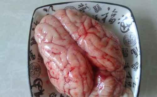 补药炖猪脑的做法_WWW.66152.COM