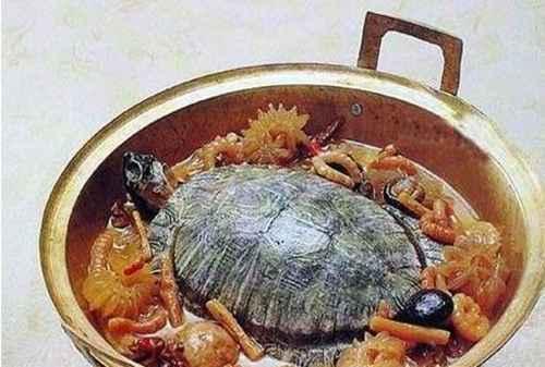 乌龟肉怎么做好吃_WWW.66152.COM