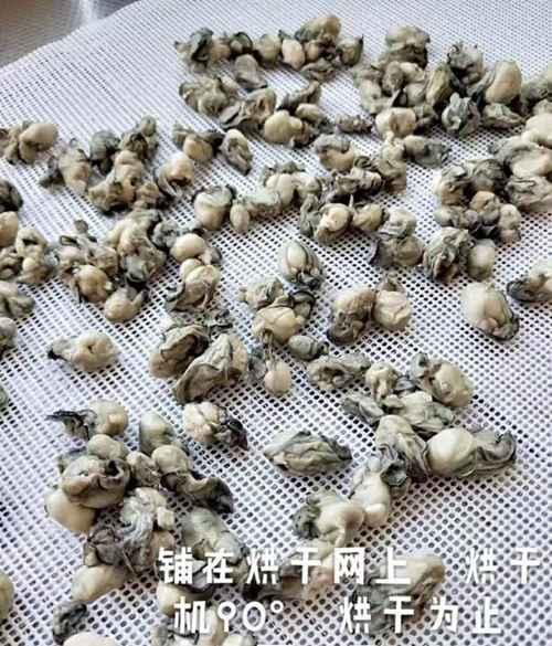 如何做牡蛎粉?_WWW.66152.COM
