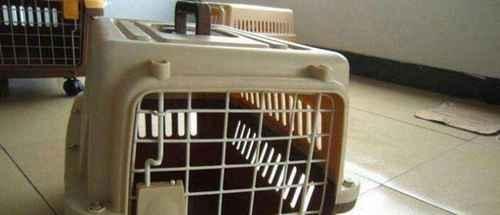 宠物空运宠物航空托运_WWW.66152.COM