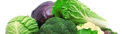 十字花科蔬菜有哪些?_WWW.66152.COM